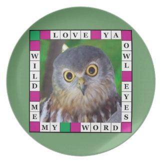 Owl-alishush Melamine Plate