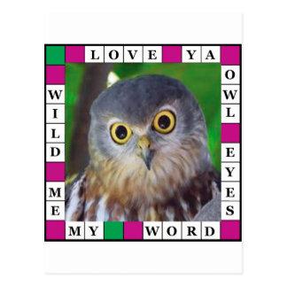 Owl-alishush Postcard
