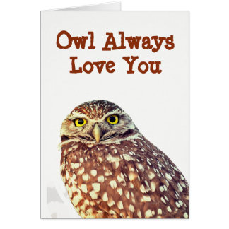 Owl Always Love You All Occasion Greeting Card