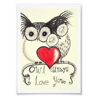owl always love you photographic print