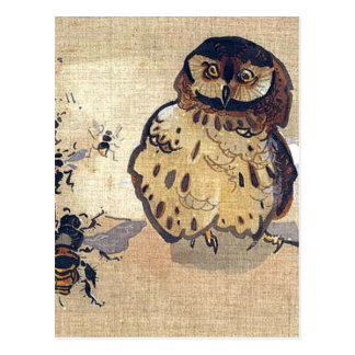 Owl And Bees Postcard