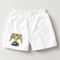 Owl and Books Boxers