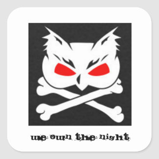 Owl and Crossbones, WE OWN THE NIGHT Square Sticker