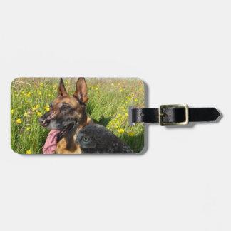 owl and dog luggage tag