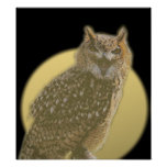 Owl and Full Moon Posters