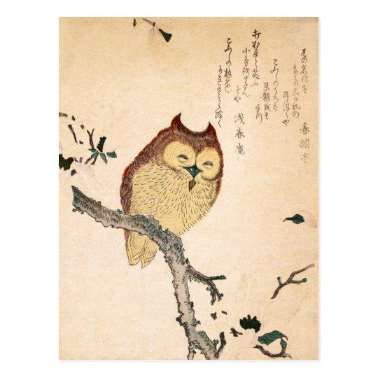 Owl and magnolia – Kobushi ni mimizuku Postcard