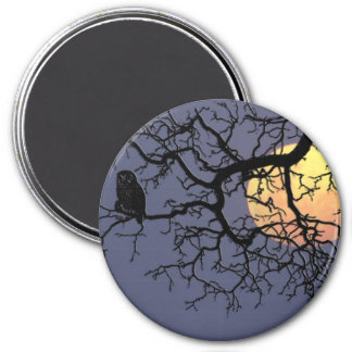 Owl and Moon Round Magnet