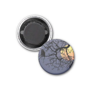 Owl and Moon Round Shaped Magnet Magnet