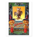 Owl and Pumpkin Corn Halloween Don'ts Post Cards