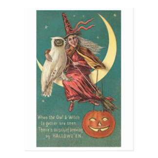 Owl and Witch Postcard