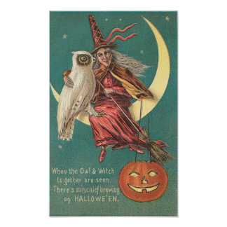 Owl and Witch Poster