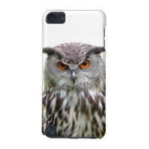 Owl animal woodland peekaboo photo iPod touch (5th generation) case