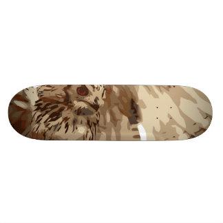 Owl art motifs skate boards