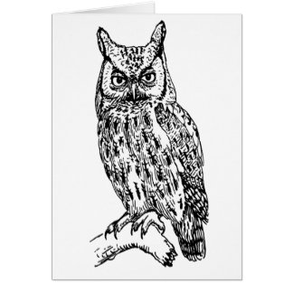 owl b/w collection card