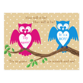 Owl baby shower gender reveal postcard