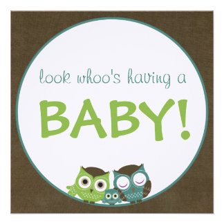 Owl Baby Shower | Green/Blue/Brown Boy Announcement