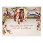 Owl Bat Autumn Fall Color Leaves Leaf Postcard