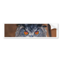 Owl Be seeing you Bumper Sticker