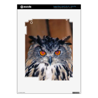 Owl Be seeing you Decals For iPad 3