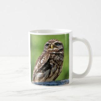 Owl beautiful photo coffee or tea mug