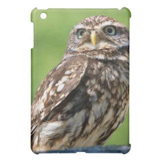 Owl beautiful photo portrait ipad case