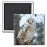 Owl Bird Animal Feathers Nature Peace Love Destiny Fridge Magnet