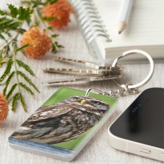 Owl bird beautiful photo portrait, gift keychain