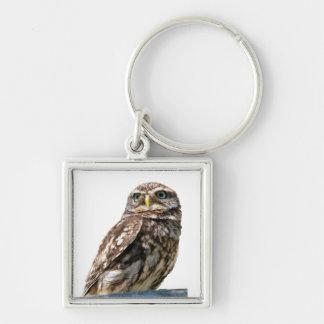 Owl bird beautiful photo portrait keyring keychain