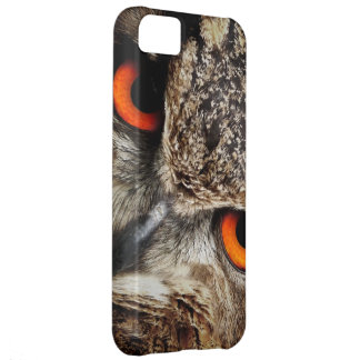 Owl Bird Eyes Face Outback Destiny Nature iPhone 5C Covers