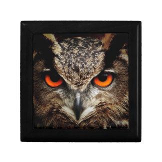 Owl Bird Eyes Face Outback Destiny Nature Keepsake Boxes
