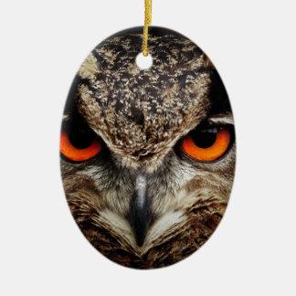 Owl Bird Eyes Face Outback Destiny Nature Christmas Tree Ornaments