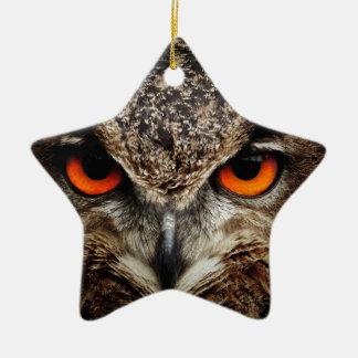 Owl Bird Eyes Face Outback Destiny Nature Christmas Ornaments