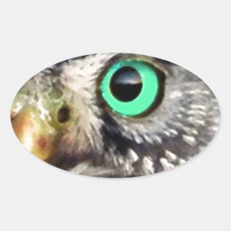 Owl Bird Eyes Tree nature wise Oval Sticker