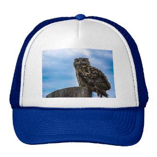 Owl Bird Feathers Animal Nature Destiny Peace Love Trucker Hat