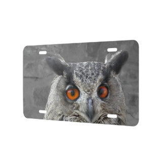 Owl Bird Feathers Animal Wings Eyes Face Art License Plate