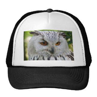 Owl Bird Feathers Destiny Gifts Mesh Hats