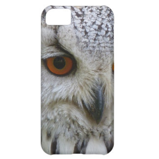 Owl Bird Feathers Destiny Gifts iPhone 5C Case