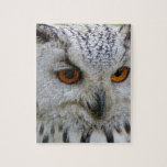 Owl Bird Feathers Destiny Gifts Jigsaw Puzzle