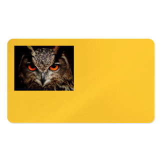 Owl Bird Feathers Wing Flight Nature Office Double-Sided Standard Business Cards (Pack Of 100)