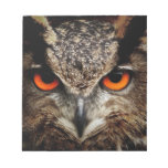 Owl Bird Feathers Wing Flight Nature Office Notepad