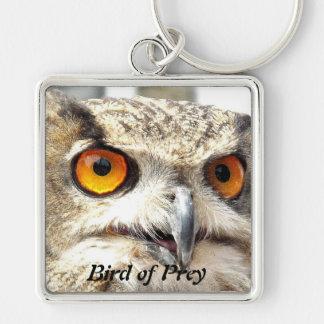 Owl  Bird of Prey Keychain
