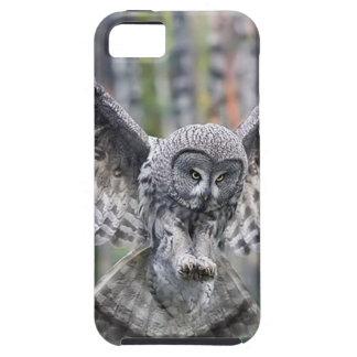Owl Birds Feathers Party Shower Teacher Class Art iPhone SE/5/5s Case