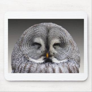 Owl Birds Feathers Party Shower Teacher Class Art Mouse Pad