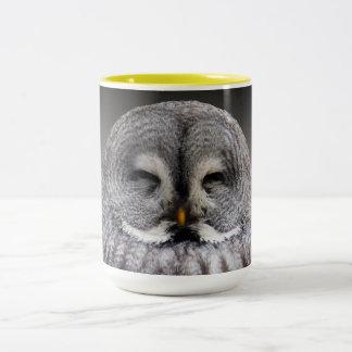 Owl Birds Feathers Party Shower Teacher Class Art Two-Tone Coffee Mug