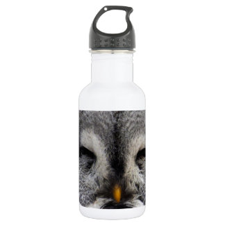 Owl Birds Feathers Party Shower Teacher Class Art Water Bottle
