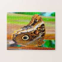 Owl Butterfly. Jigsaw Puzzle