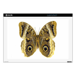 Owl Butterfly Decals For Laptops