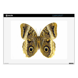 Owl Butterfly Skins For Laptops