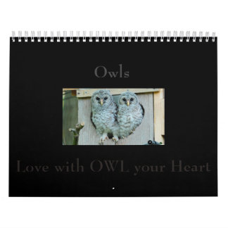 Owl Calendar, Spend a year with BeautifOwl Photos Calendar