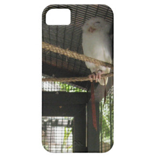 Owl iPhone 5 Cover